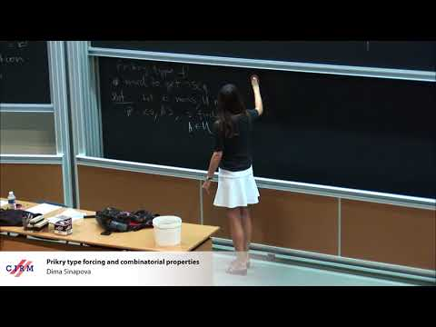 Dima Sinapova : Prikry type forcing and combinatorial properties