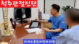 척추통증진단