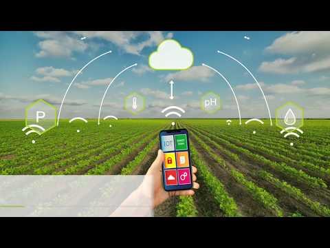 Видео уроки новые технологии