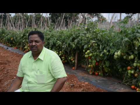 Interview by Shri.M.Babu Reddy, Farmer