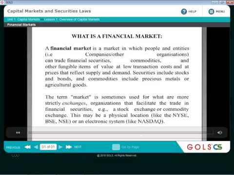 capital market (overview) CH1 / capital market and securities law / cs executive