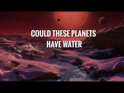 TRAPPIST-1: Weirdest habitable worlds