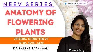Anatomy of Flowering Plants: Internal Structure of Stem, Root, Leaf | Dr. Sakshi Baranwal
