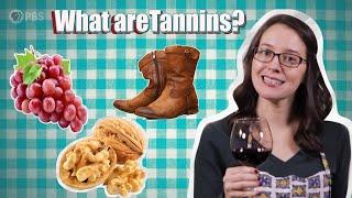 Wine Time: Let's Taste Some Tannins!   Serving Up Science