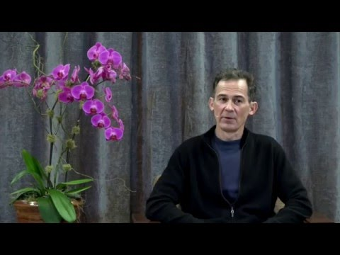 Meditation: Now Is a Window Onto Eternity