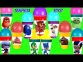 PJ Masks The Secret Life of Pets & Angry Birds Surprise Toy Balloon Cups