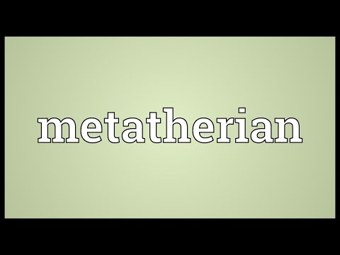 Metatherian Meaning