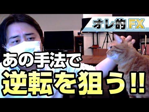 FX、1000万円を稼いだ手法で逆転を狙います!!!
