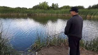 Рыбалка на щуку с берега Pike fishing from the shore