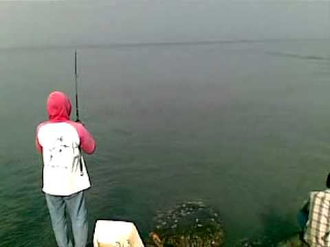 About Fishing On Gampong Jawa , Banda Aceh Travel Video