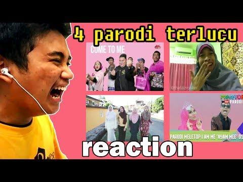 Parodi I Am Me - DSV REACTION (Meletop Parodi and Other)