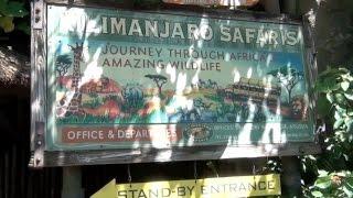 Kilimanjaro Safari in Animal Kindom, Walt Disney World