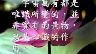 法相宗  (唯識宗)三界唯心  萬法唯識(觀成法師之廣結善緣0709) thumbnail