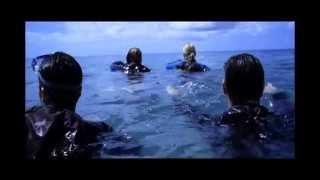 El Arrecife (The Reef) (Andrew Traucki, Australia, 2010)