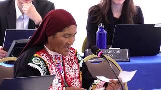 Mujeres Indígenas: Empresas mineras y contaminación de territorio
