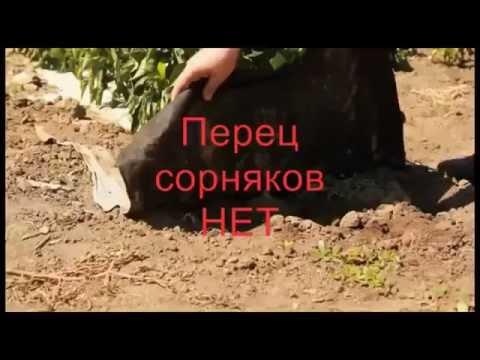 Агроволокно. Купить агроволокно в интернет-магазине наша стройка. Выгодные цены, быстрая доставка по киеву и всей украине. Звоните!. (050) 414-92-73.