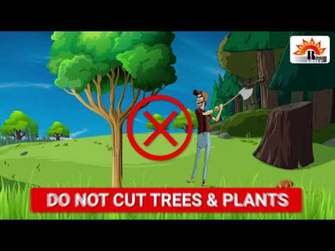 Plantation By Rise Group Pvt. Ltd.