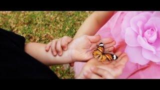 Vlinders - Die Campbells