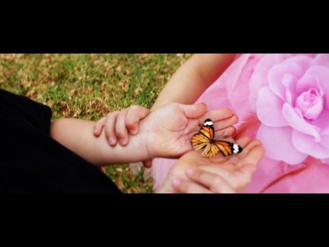 Die Campbells - Vlinders