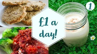 How to live on £1 a day |  Vegan on a budget | DAY 1