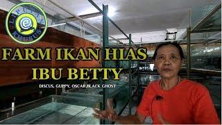 Farm ibu betty pondok cabe tangerang #Liputan Khusus