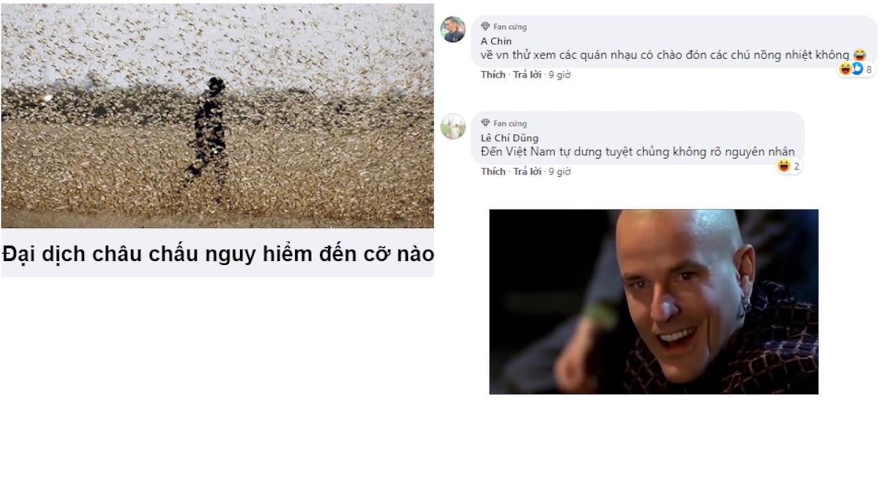 Top Comment Lầy Lội 2020 - Bình luận hài hước bá đạo nhất Facebook, Phần 81