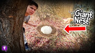 OOZE CLUES! Giant Nest, We Found Fur. Mystery with HobbyKidsTV