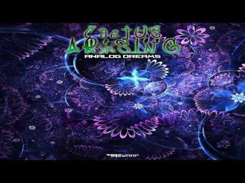 CACTUS ARISING - Analog Pots (Original Mix)