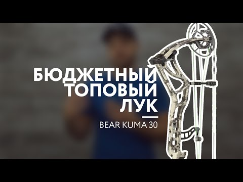 Бюджетный топовый лук [Bear Kuma 30]