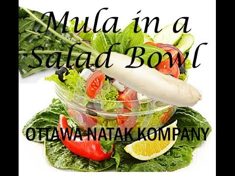 Mula In a Salad Bowl by Ottawa Natak Kompany