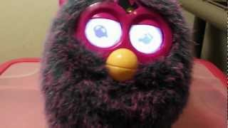 my furby dancing to call me maybe