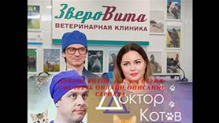 Доктор Котов 1, 2, 3, 4 серия, смотреть онлайн Описание сериала 2018! Анонс! Премьера