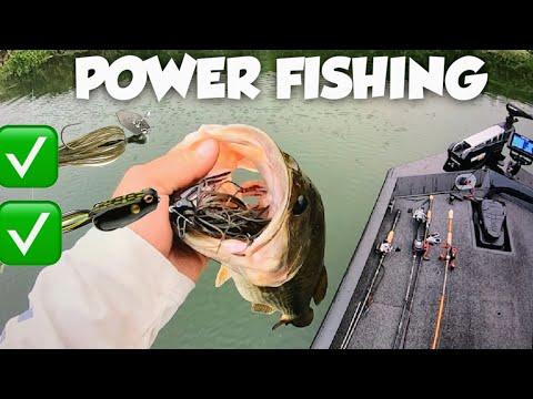 California Delta Bass Fishing.(FALL FEED BAG)