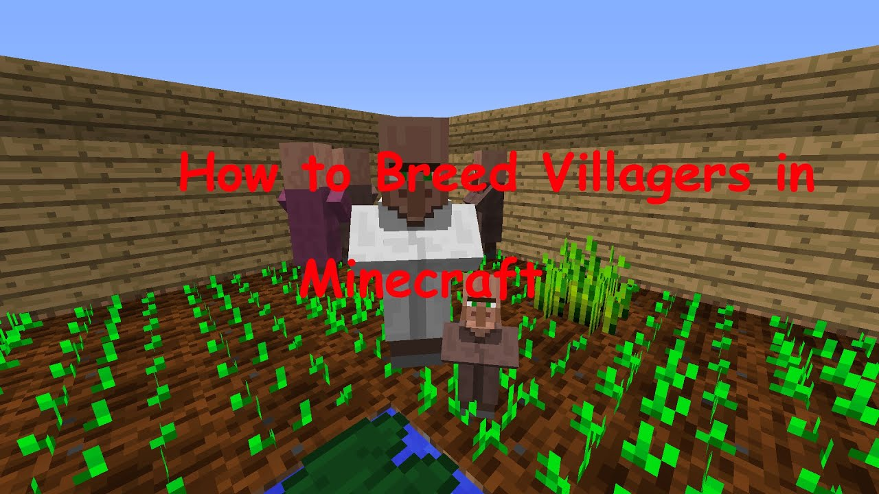 How to breed Villagers in Minecraft 1 11 2 (HD)