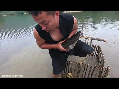 Primitive Life - Primitive People Caught Fish In The Traps Of Ethnic Girl