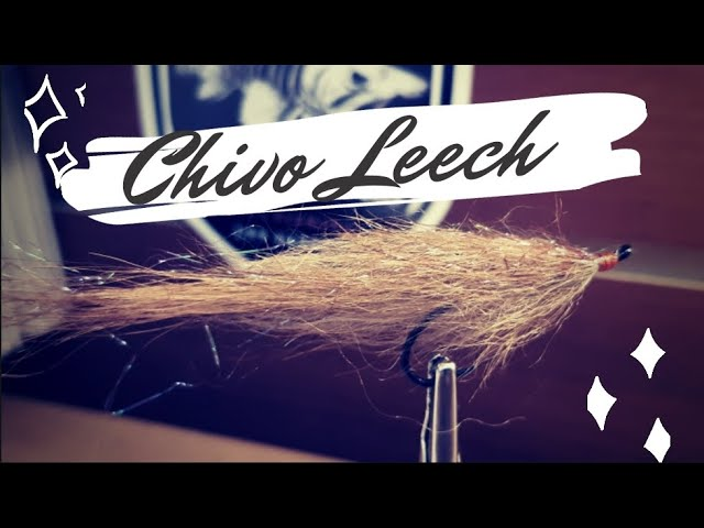 Chivo Leech