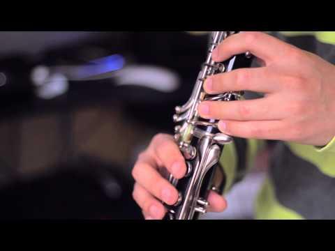 Zelda's Lullaby (Clarinet Cover Ft. CSGuitar89)