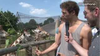 Lawson at London Zoo with In Demand