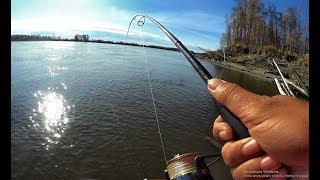 ЮРА ЭТО ПИСЕЦ ОНО ЛОДКУ РАЗВОРАЧИВАЕТ!!!Трофейная рыбалка на Оби ,Крупная щука,джиг trofi fishing