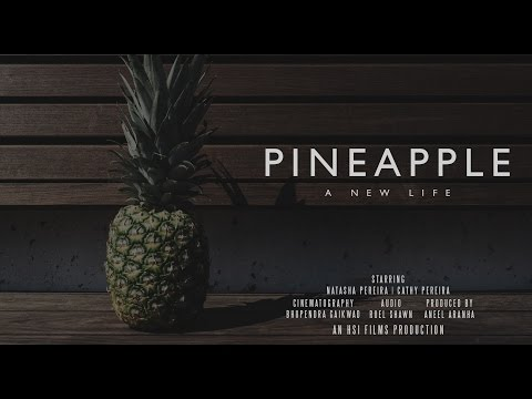 Pineapple - A New Life - Short Movie