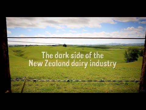 2015 Exposė - the dark side of dairy