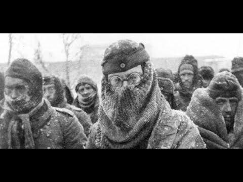 Stalingrad 1943: Warum