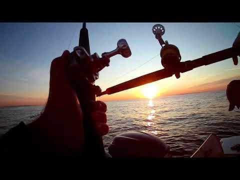 Striper Fishing Staten Island 2019