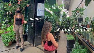 VLOG | plant shopping, vegan c…