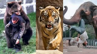 10 Fugas de Zoológicos que Acabaron Mal