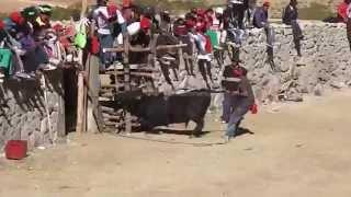 CORRIDA DE TOROS EN AUTAMA-SUCRE-AYACUCHO Olimpio Churasi Ccopa