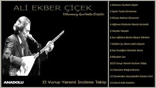 Ali Ekber Çiçek - El Vurup Yaremi İncitme Tabip (Official Lyric Video)