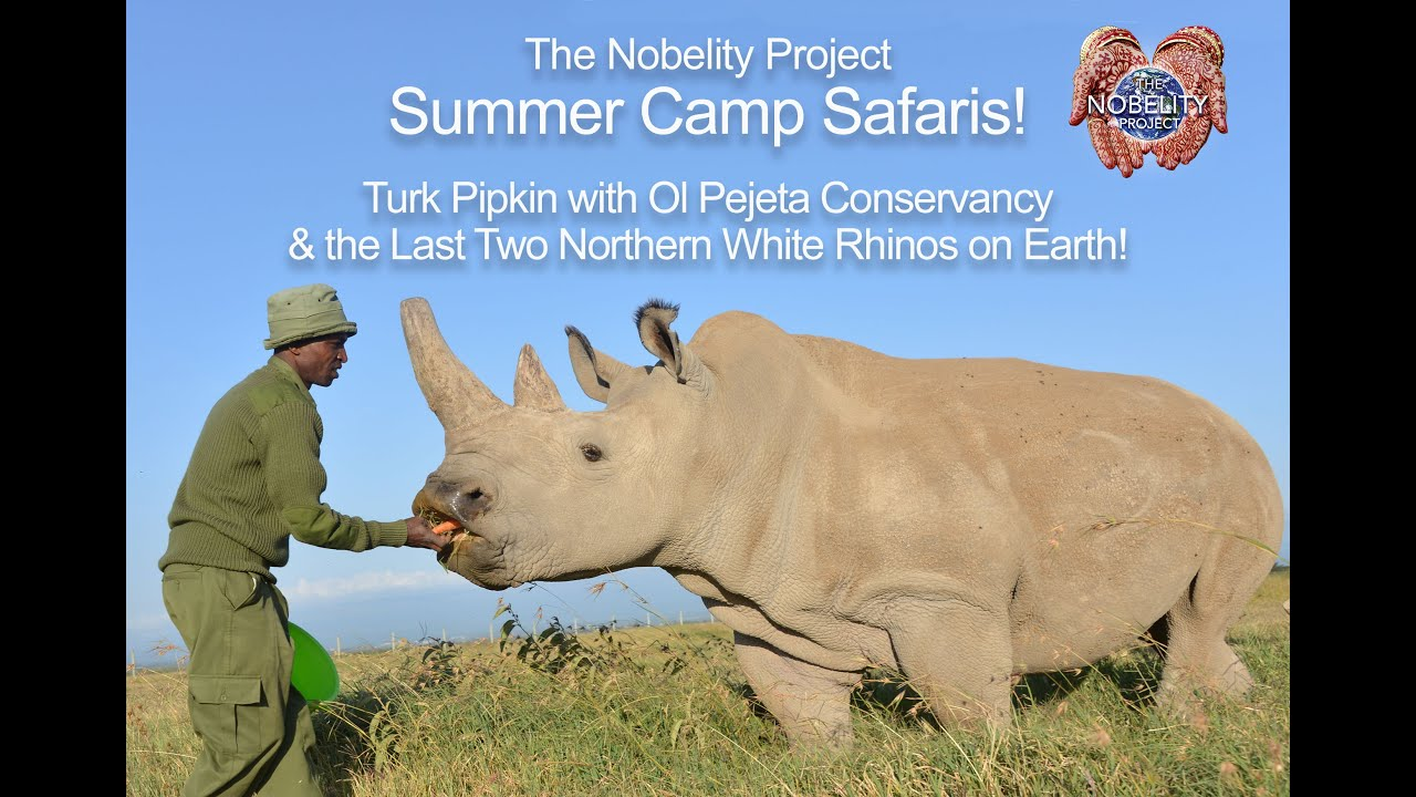 Summer Camp Safari w- Ol Pejeta and the last two Northern White Rhinos on Earth