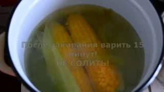 Как ПРАВИЛЬНО варить кукурузу? Сколько варить кукурузу?