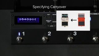 ES-5 Quick Start Chapter 6: Specifying Carryover